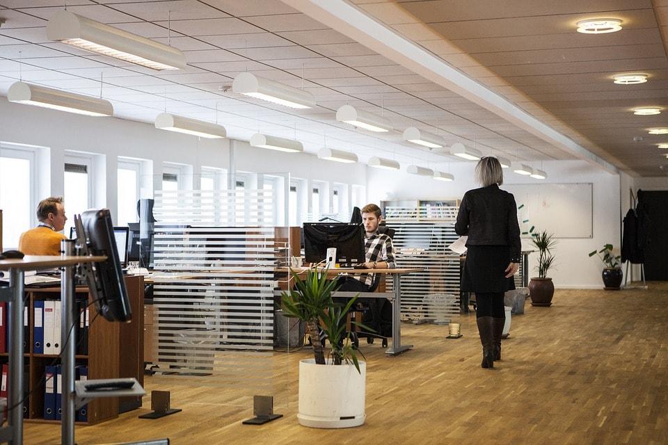 biombos-despacho