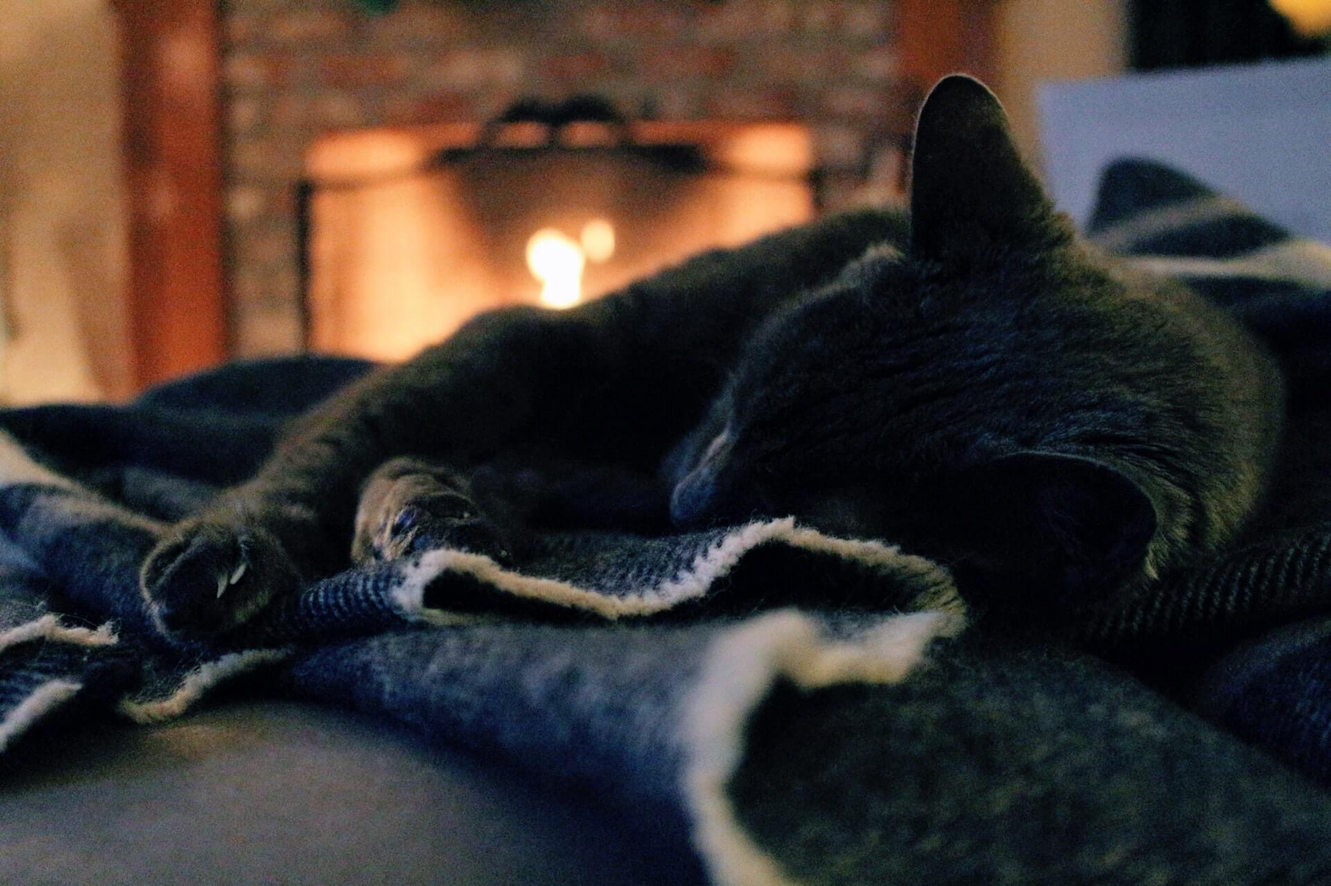las calderas son muy importantes para el confort de tu hogar
