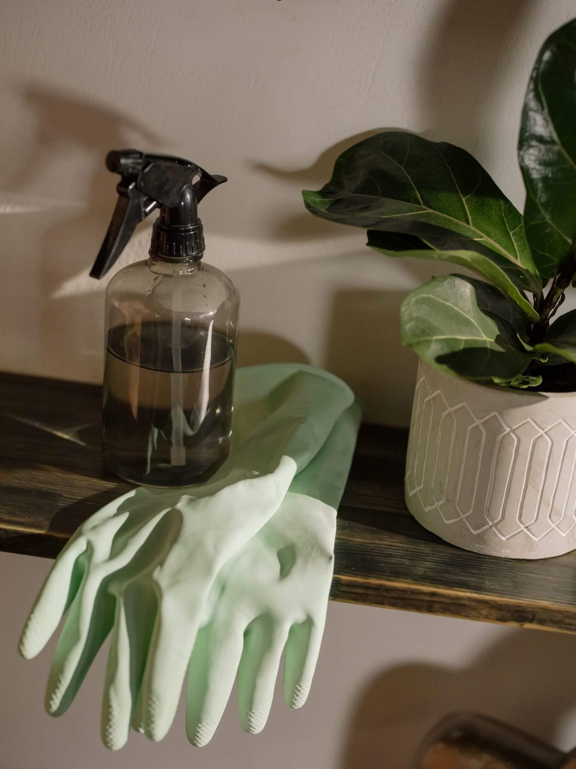 empresa de limpieza en el hogar
